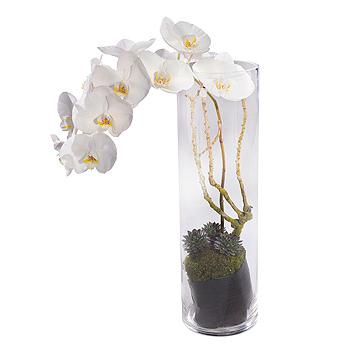 white orchid vase arrangement rh flowersblackpool co uk orchid flower with vase orchid vase ideas